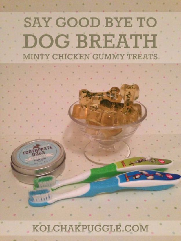 DIY Dog Grooming Tutorials - Dog Teeth Care - Cool and Easy Ways to Wash, Groom and Style Your Pets Fur - Trim Toenails, Brush Teeth, Bath, Trim and Clip Dogs Fur - Hair - Remove Fleas and Anti Itch - Save Money At The Groomer By Learning How To Do These Things At Home http://diyjoy.com/diy-dog-grooming