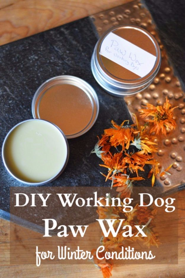 DIY Dog Grooming Tutorials - Paw Wax For Working Dogs - Cool and Easy Ways to Wash, Groom and Style Your Pets Fur - Trim Toenails, Brush Teeth, Bath, Trim and Clip Dogs Fur - Hair - Remove Fleas and Anti Itch - Save Money At The Groomer By Learning How To Do These Things At Home http://diyjoy.com/diy-dog-grooming