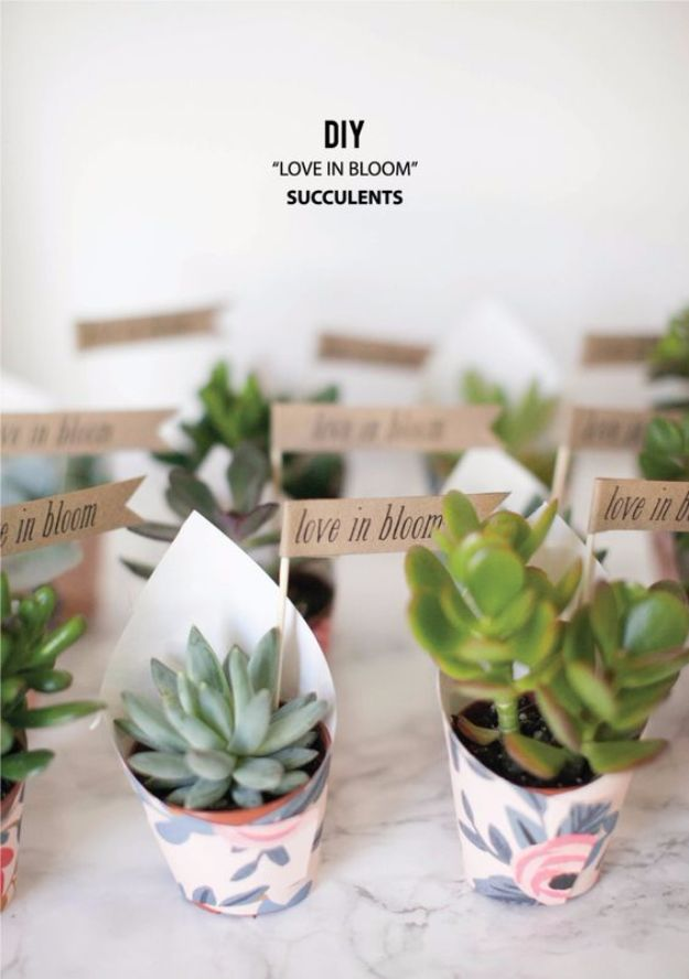 DIY Wedding Favors - DIY Love In Bloom Succulent Favors - Do It Yourself Ideas for Brides and Best Wedding Favor Ideas for Weddings - Step by Step Tutorials for Making Mason Jars, Rustic Crafts, Flowers, Small Gifts, Modern Decor, Vintage and Cheap Ideas for Couples on A Budget Outdoor and Indoor Weddings http://diyjoy.com/diy-wedding-favors