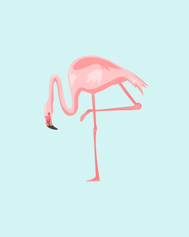Free Printables For Your Walls - Pretty In Pink Flamingos Free Printables - Best Free Prints for Wall Art and Picture to Print for Home and Bedroom Decor - Ideas for the Home, Organization - Quotes for Bedroom and Kitchens, Vintage Bathroom Pictures - Downloadable Printable for Kids - DIY and Crafts by DIY JOY http://diyjoy.com/free-printables-walls
