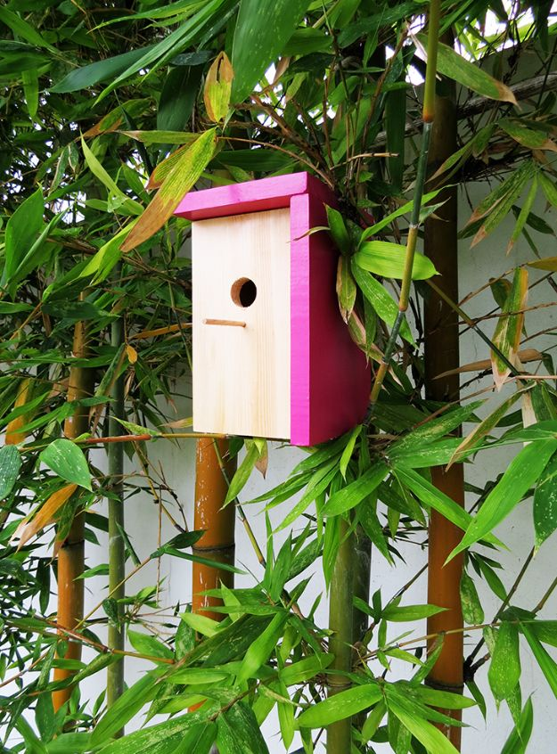 DIY Bird Houses - Build A Modern Birdhouse - Easy Bird House Ideas for Kids and Adult To Make - Free Plans and Tutorials for Wooden, Simple, Upcyle Designs, Recycle Plastic and Creative Ways To Make Rustic Outdoor Decor and a Home for the Birds - Fun Projects for Your Backyard This Summer http://diyjoy.com/diy-bird-houses