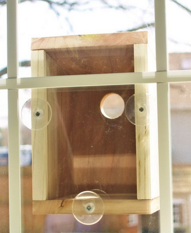 DIY Bird Houses - Window Birdhouse - Easy Bird House Ideas for Kids and Adult To Make - Free Plans and Tutorials for Wooden, Simple, Upcyle Designs, Recycle Plastic and Creative Ways To Make Rustic Outdoor Decor and a Home for the Birds - Fun Projects for Your Backyard This Summer http://diyjoy.com/diy-bird-houses