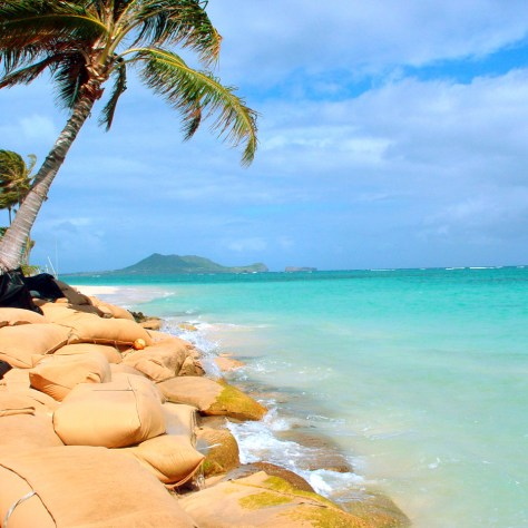 Hawaii in Davao Soon!