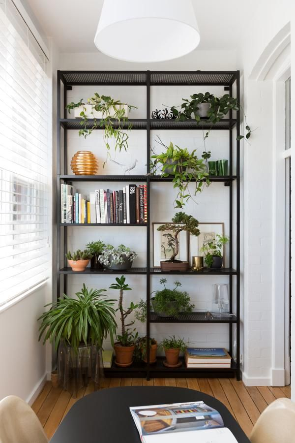 Diy Shelves Ideas Darlinghurst