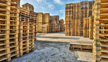 Piles of euro type cargo pallets at a recycling business area | Pallet 101: Types, Standard Pallet Size And More | Featured