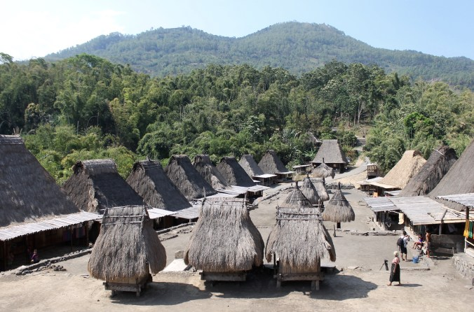 Bena Village at foot of Mt Inerie