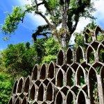 Xilitla & Las Pozas: Jungle Surrealism