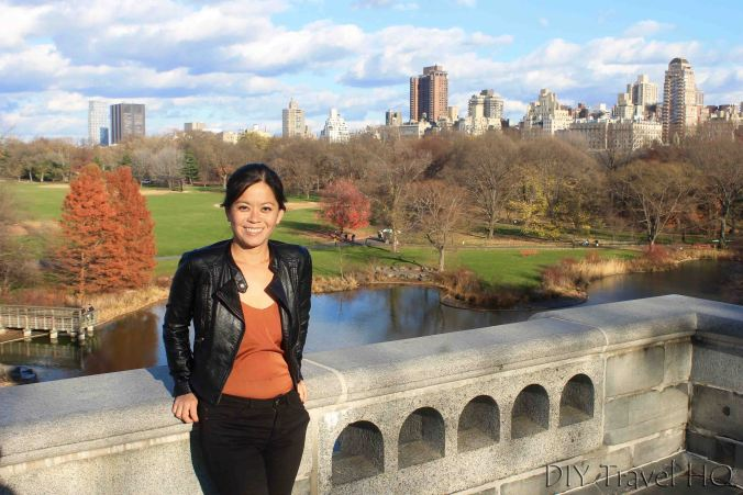 View of Central Park from Belvedere Castle