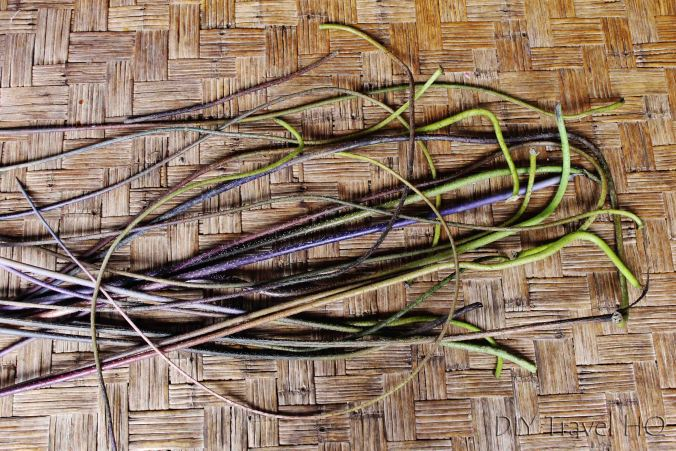 Lotus roots for weaving