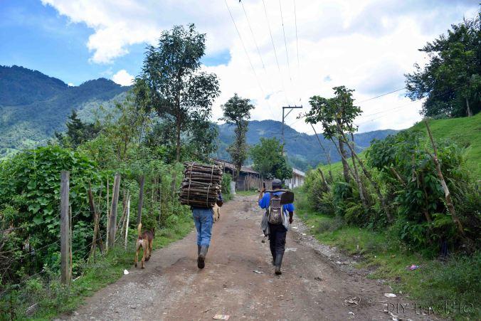 Collecting firewood on Nebaj to Acul hiking trail