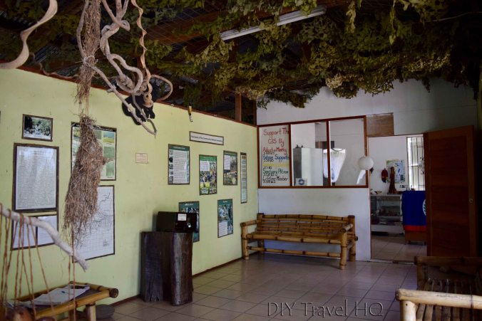 Museum at Community Baboon Sanctuary