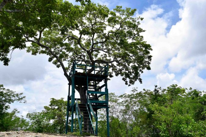 San Miguel Lookout Tower