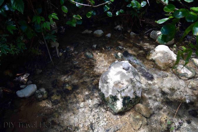 Source of Finca el Paraiso Hot Springs