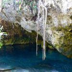 Gran Cenote Tips & Tricks: Is it Worth it?