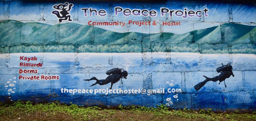 The Peace Project Hostel & NGO