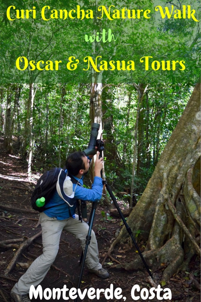 A guided nature walk is the top reason to visit Monteverde, Costa Rica & Curi Cancha is the best park for wildlife spotting. We took a tour with Oscar, a certified naturalist from Nasua Tours, fluent in both English & Spanish. We at DIY Travel HQ typically don't use the services of guides for attractions & wildlife spotting, but now we see what we have been missing out on. Find out how Oscar from Nasua Tours made all the difference!