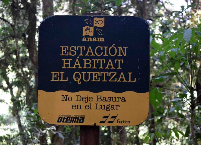 Sendero Los Quetzales Home of the Resplendent Quetzal