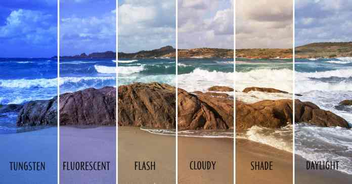 Image showing different white balance settings on one photo.