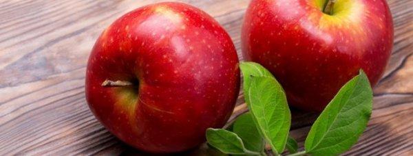 Яблоня Гала: описание сорта яблок + фото, отзывы