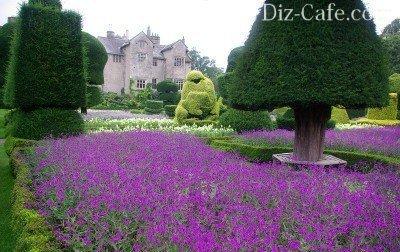 Topiary no clássico