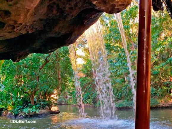 The backside of water on Disney Jungle Cruise as you pass under Schweitzer Falls
