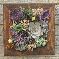 45+ Know What Gurus Think About Assorted Succulents 19