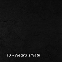 13 - Negru striatii