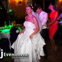 dj lumini nunta oravita