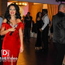 dj lumini decorative fum nunta foto video casa regia orastie (30 of 46)