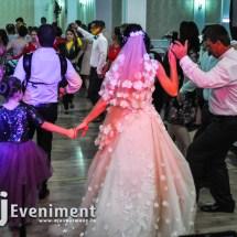 dj lumini fum nunta foto video lugoj