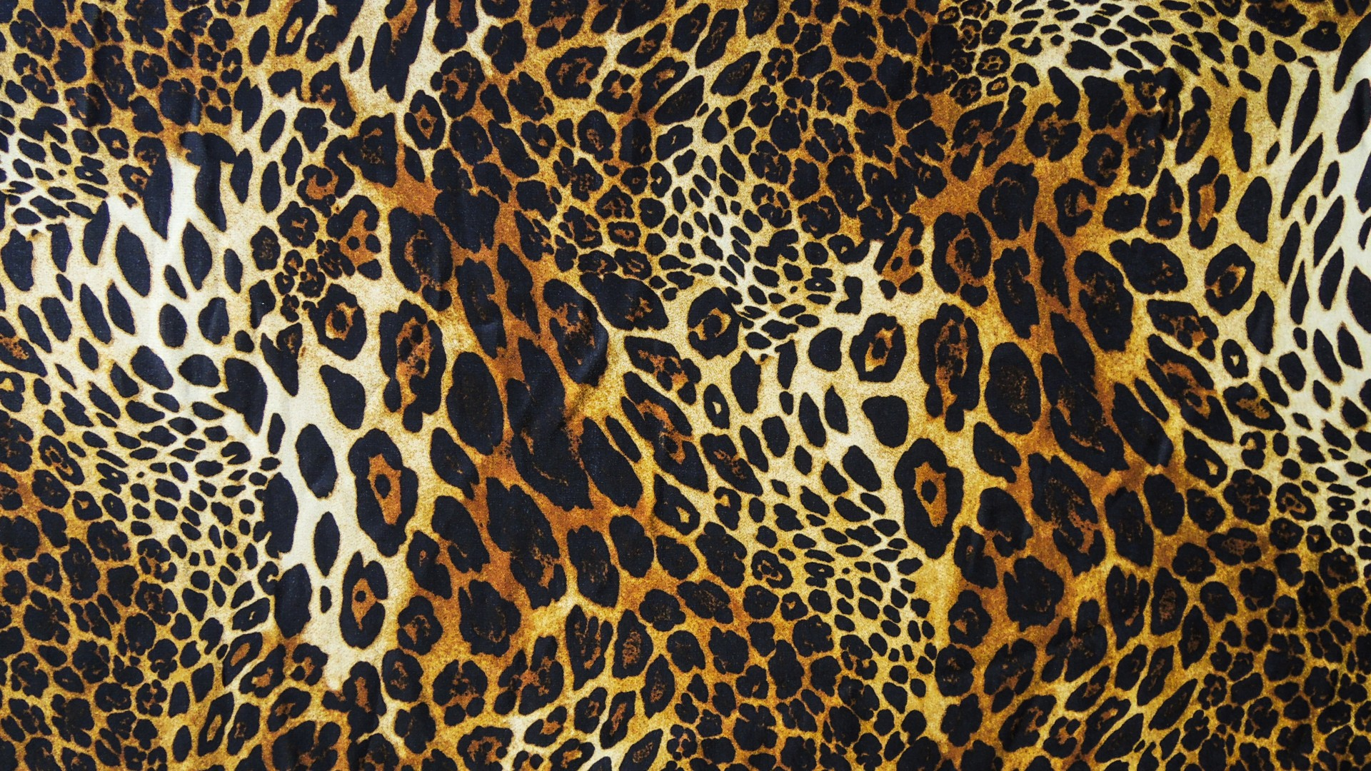 leopard-background-7