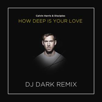Calvin Harris & Disciples - How Deep Is Your Love (DJ Dark Remix)