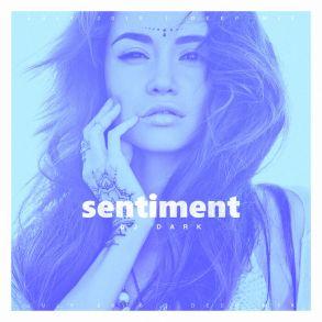 Dj Dark - Sentiment (July 2016 Deep Mix)