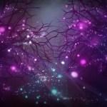 Last Motley Forest Desktop Background