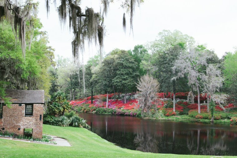 Charleston_Spring-31