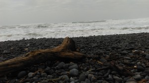 waves and driftwood at beach near 'atolan, october 2014. djh