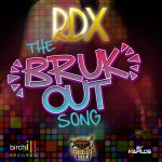 RDX Bruk Out Song behind scenes 2013