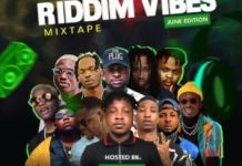 dj-shevy-riddim-vibe-mixtape-2019