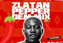 Download-DJ-Kaywise-Pepper-Dem-Mix mixtape mp3