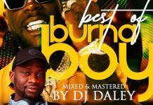 DJ Daley Best Of Burna Boy mixtape 2019 2020 mp3 download