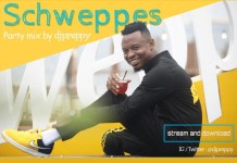dj-preppy-schweppes-mix-download