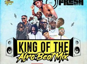 dj fresh king of the afro beat mix