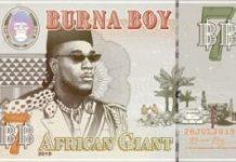 DJ Jhoonzihn Best Of Burna Boy Mix 2020