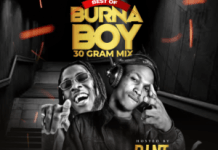 DJ NT Best Of Burna Boy 30 Gram Mix - Afrobeat Music Mix 2020