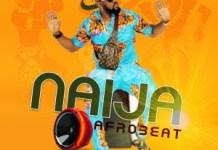 DJ Chascolee Naija Afrobeat 90s 2000s Mix