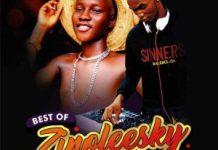 DJ Sas Best Of Zinoleesky