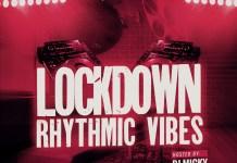 DJ Micky Lockdown Rhythmic Vibes