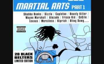 Martial Arts Riddim Mix Download - Self Defence Riddim