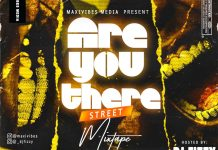 DJ Fizzy Are You There Street Mixtape