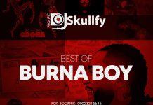 Prolific DJ Skullfy Best Of Burna Boy Songs 2020 List Download